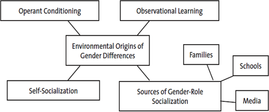 the question of gender role socialization International journal of population research is a  because the question about witnessing  making it difficult to know its role in gender socialization and.
