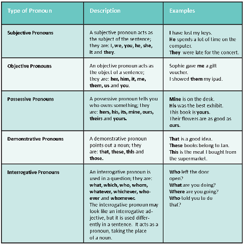 using pronouns in essays Persuasive essay personal pronouns in argumentative essays: discourse functions and patterns of use use personal pronouns i, we, and you in argumentative texts.